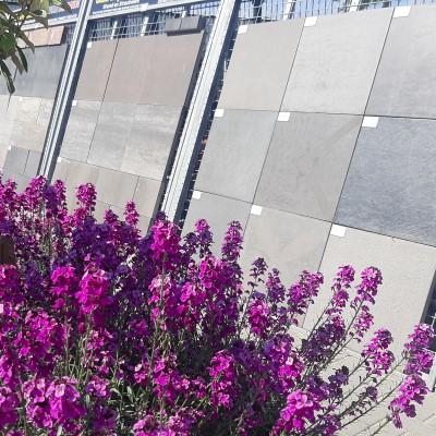 Drijfhout Showtuin Bestrating